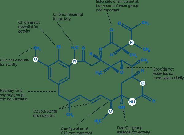 maytansinoids properties